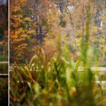 Jesienna sesja plenerowa w Bychawie